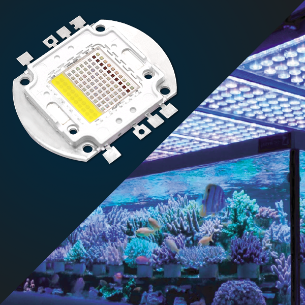 AQUARIUM LIGHTING - COB led chips